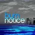 """Em fevereiro, a partir de terça-feira, dia 19 de janeiro, às 21h, o sucesso do canal FX, """"Burn Notice"""" estreia na Fox. A série centraliza na história de Michael […]"""