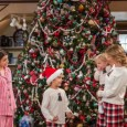"""A Netflix acaba de dar um excelente presente de Natal para os assinantes e fãs. O site de streaming garantiu a renovação de """"Fuller House"""" para uma 3ª temporada. […]"""