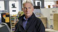 """O agente Gibbs não vai a lugar algum. É o que garante a renovação de """"NCIS"""" para sua 16ª temporada, recém-oficializada pela CBS. """"É muito simples: telespectadores de todos os […]"""